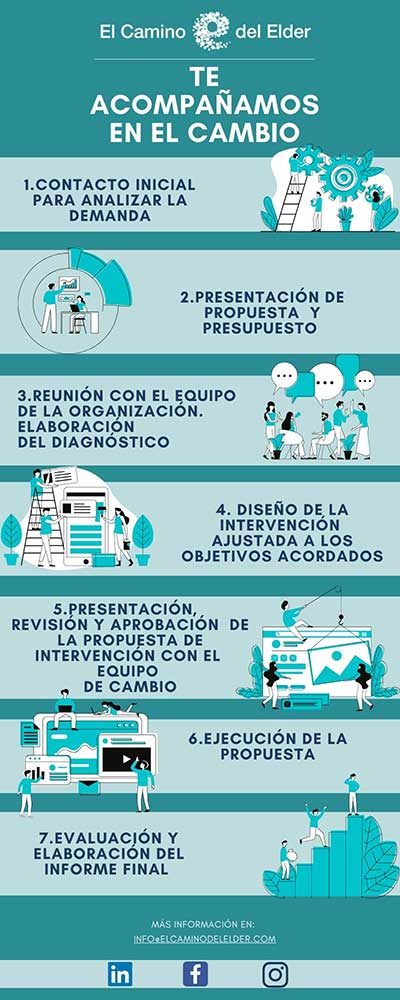 infografía pasos